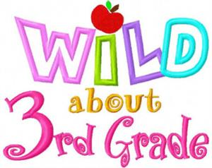 Wild About 3rd Grade